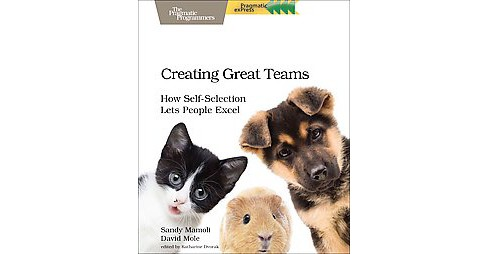Creating Great Teams : How Self-Selection Lets People Excel (Paperback) (Sandy Mamoli & David Mole) - image 1 of 1