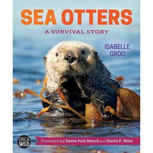 Sea Otters - (Orca Wild) by  Isabelle Groc (Hardcover) - image 1 of 1