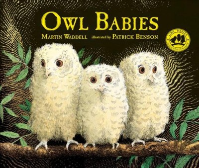 Owl Babies (School And Library)(Martin Waddell)