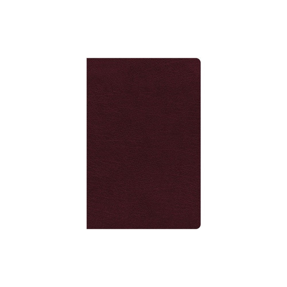 Holy Bible : New International Version, Burgundy, Bonded Leather, Thinline Reference, Comfort Print