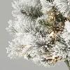 3ft/2pk Pre-Lit Flocked Virginia Pine Potted Artificial Christmas Tree Clear Lights - Wondershop™ - image 2 of 2