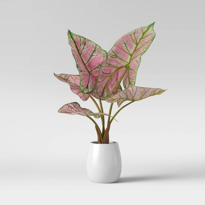 Faux Caladium Leaves in Pot Pink - Opalhouse™