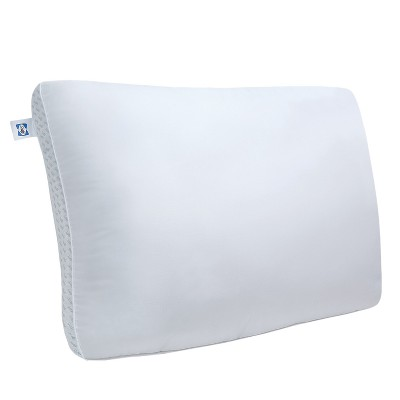Sealy Memory Foam and Fiber Bed Pillow (Standard)