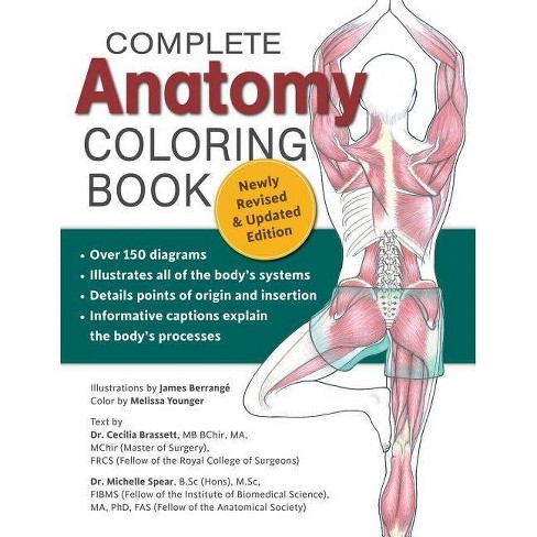 Complete Anatomy Coloring Book Newly Revised And Updated Edition 2nd Edition By Dr Cecilia Brasset Dr Michelle Spear Paperback Target