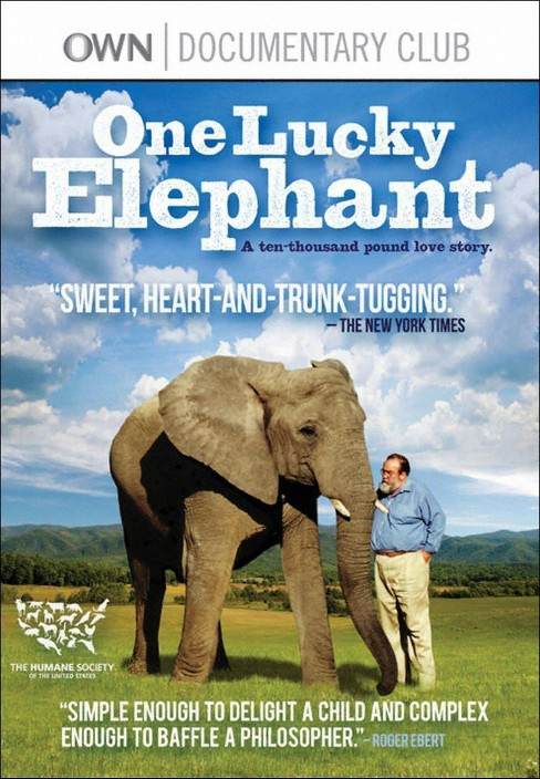 One lucky elephant (DVD) - image 1 of 1