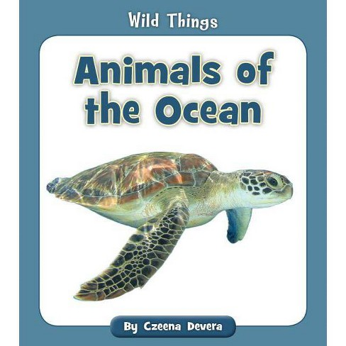 Animals of the Ocean - (Wild Things) by  Czeena Devera (Paperback) - image 1 of 1