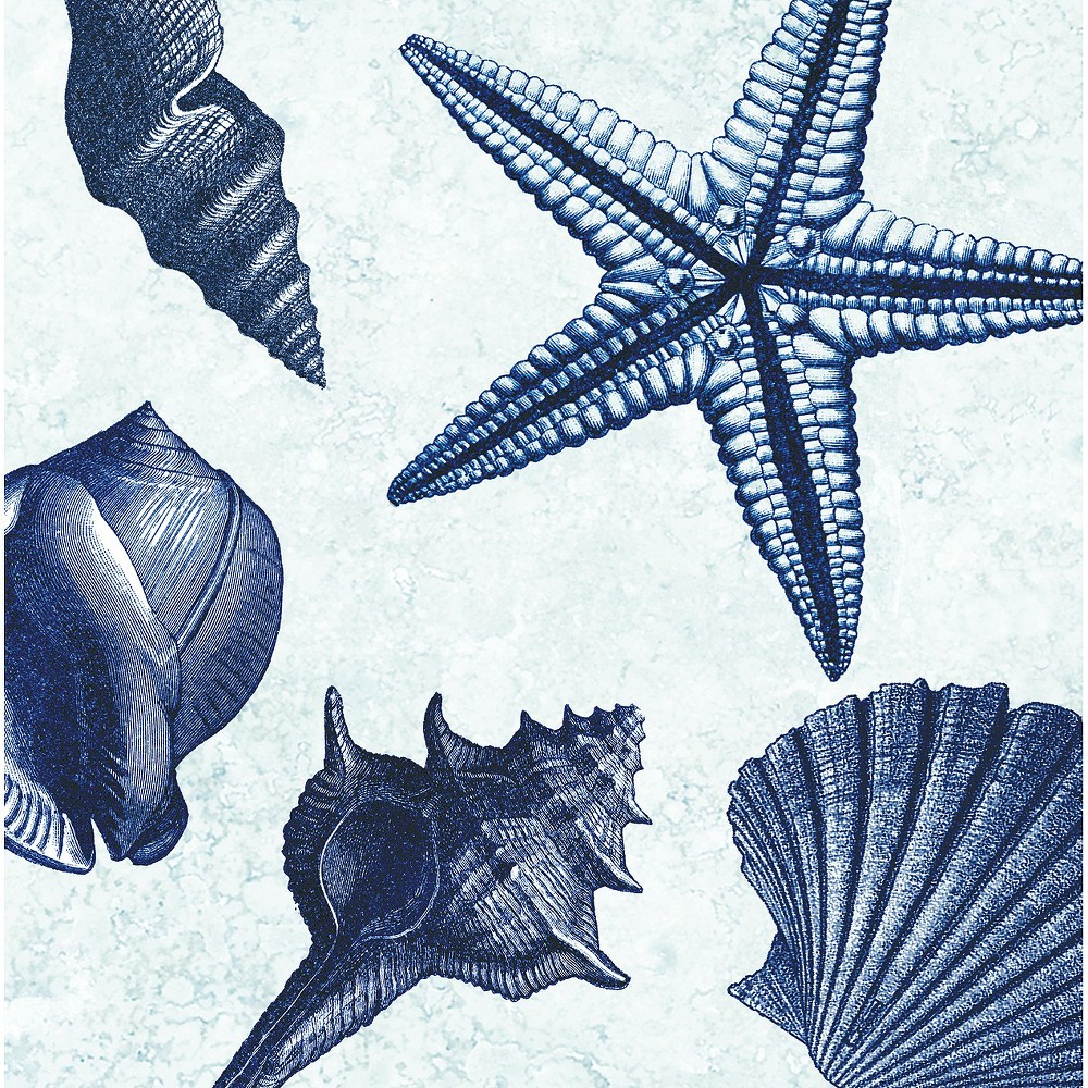 Image of Thirstystone Shell Toss 4 Piece Occasions Coaster Set