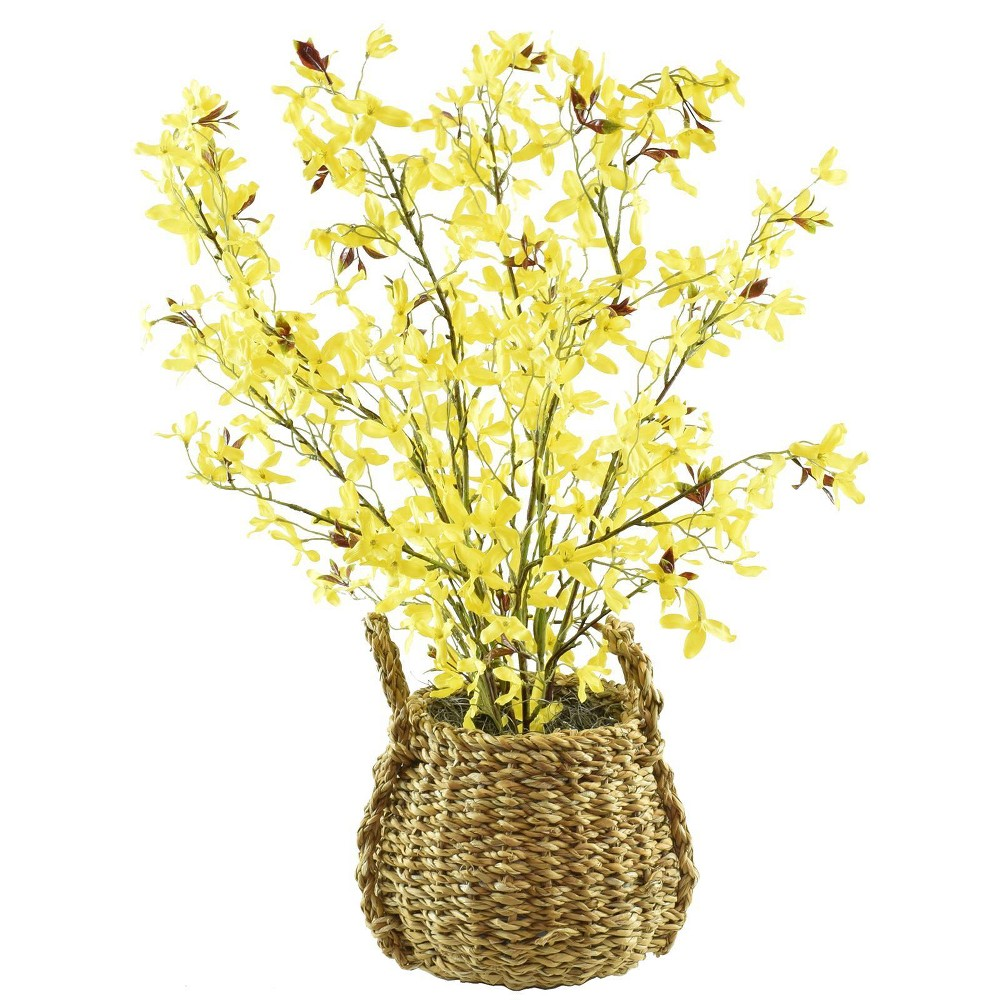 "Image of ""28"""" x 16"""" Artificial Forsythia in Basket with Handles Yellow - LCG Florals"""