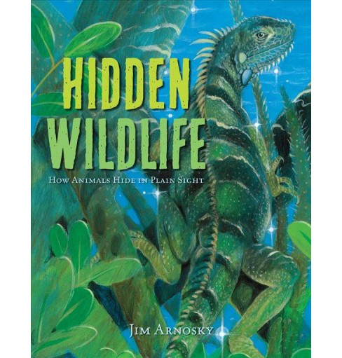 Hidden Wildlife : How Animals Hide in Plain Sight -  by Jim Arnosky (School And Library) - image 1 of 1