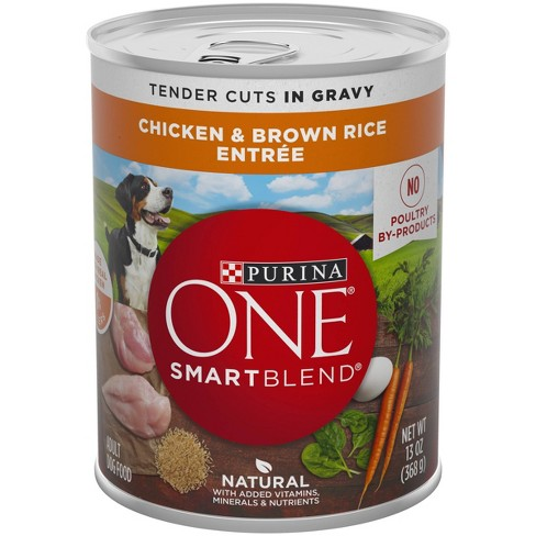 Purina ONE Natural, High Protein Gravy Wet Dog Food, SmartBlend Tender Cuts Chicken & Brown Rice - 13oz - image 1 of 4