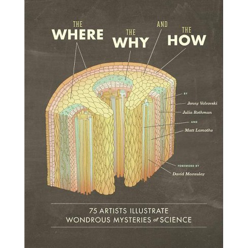 The Where, the Why, and the How - by  Matt Lamothe & Julia Rothman & Jenny Volvovski (Hardcover) - image 1 of 1