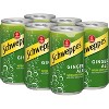 Schweppes Ginger Ale - 6pk/7.5 fl oz Cans - image 3 of 4