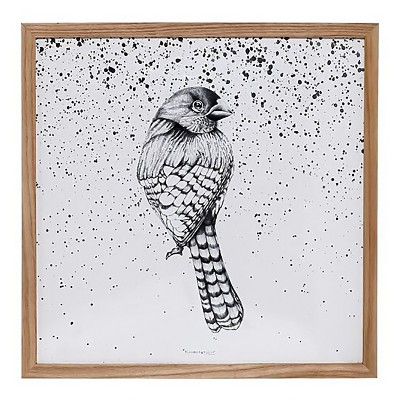 Wood Framed Bird Wall Décor - 3R Studios