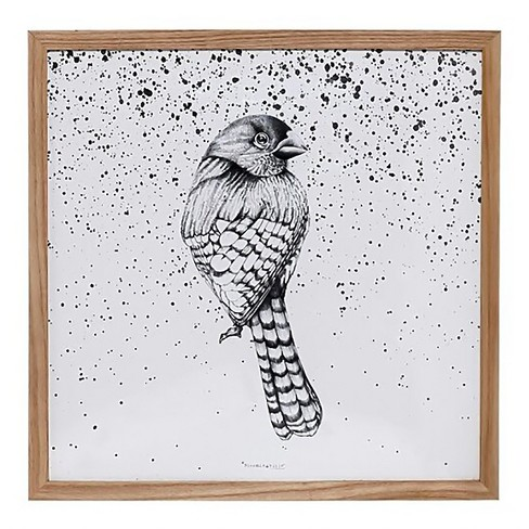 Wood Framed Bird Wall Décor - 3R Studios : Target
