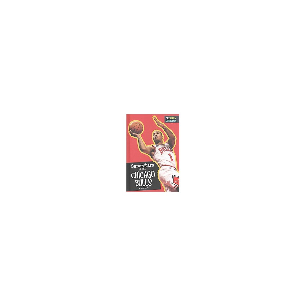 Superstars of the Chicago Bulls (Library) (David Aretha)
