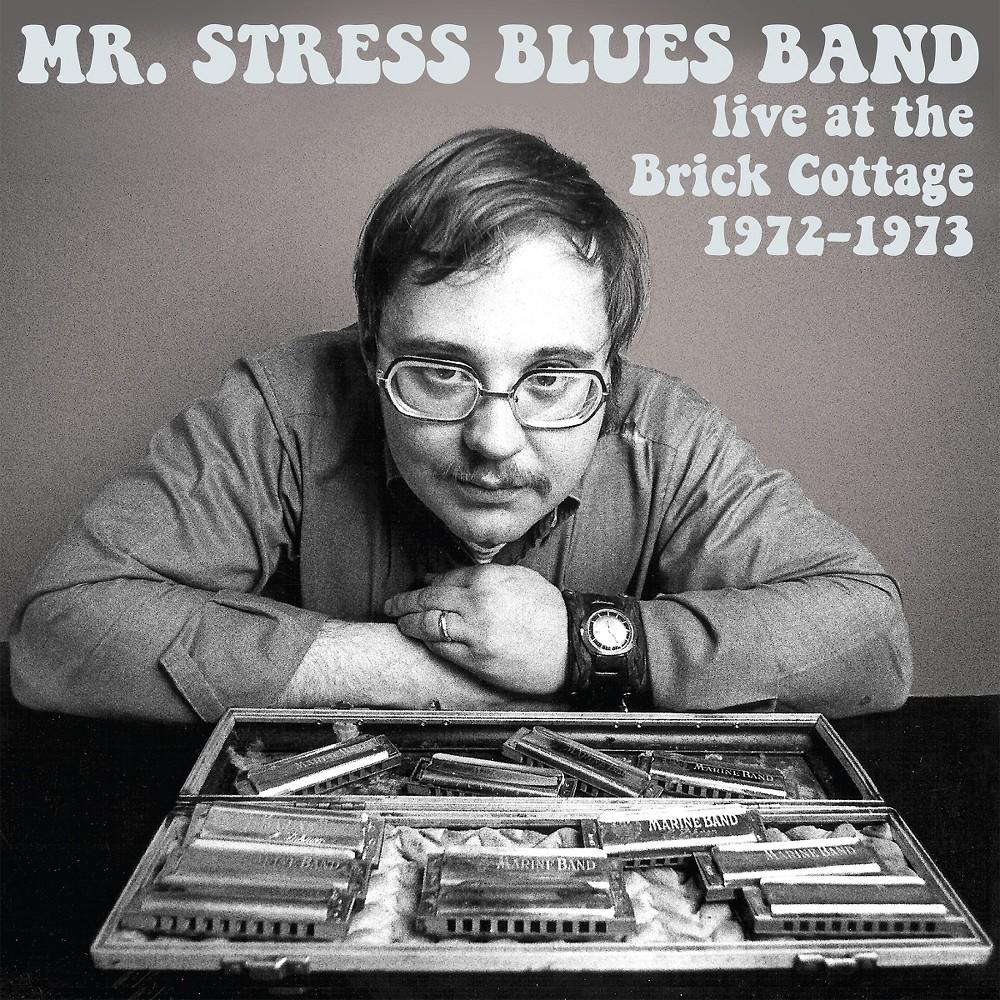 Mr. Stress Blues Ban - Mr. Stress Blues Band:Live At The Bri (CD)