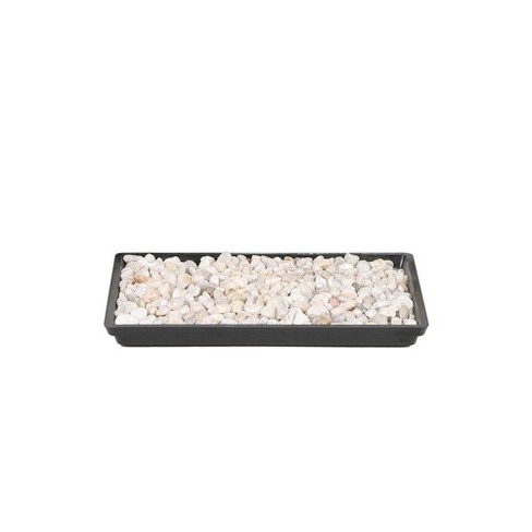 """8"""" Humidity Tray - Brussel's Bonsai - image 1 of 1"""