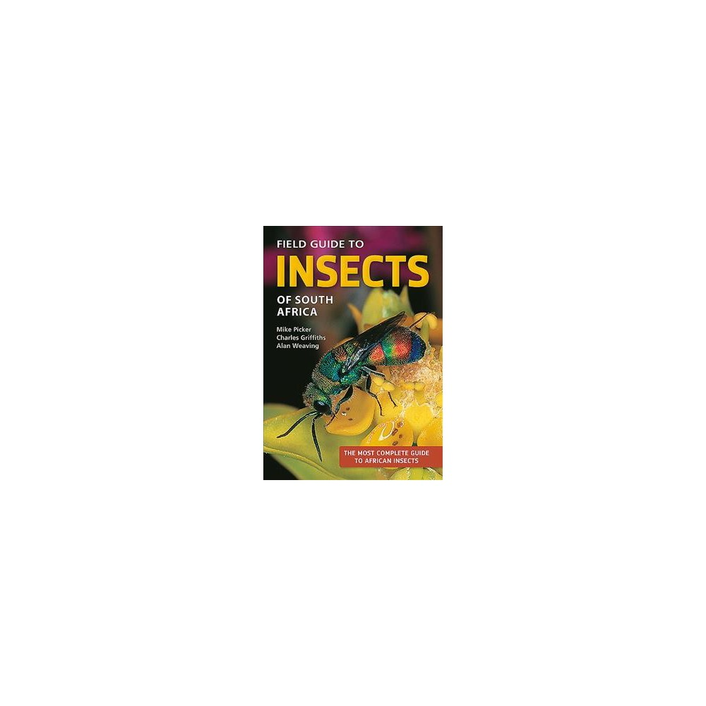 Field Guide to Insects of South Africa - 3 by Alan Weaving (Paperback)