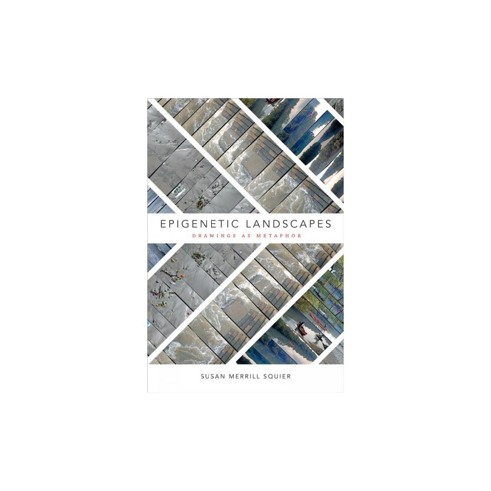 Epigenetic Landscapes : Drawings As Metaphor - by Susan Merrill Squier (Paperback)