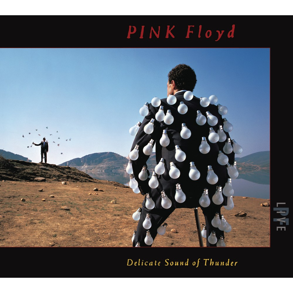 Pink Floyd - Delicate Sound Of Thunder (CD)