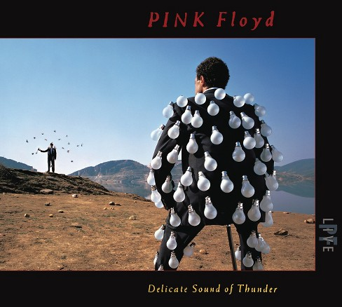 Pink Floyd - Delicate Sound Of Thunder (CD) - image 1 of 1