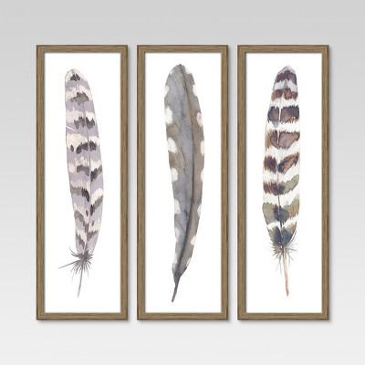 12 X36  Framed 3pk Feathers - Threshold™