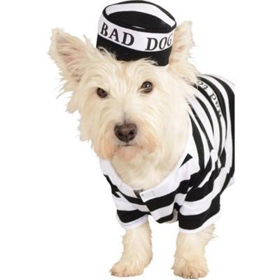 Rubies Prisoner Dog Pet Costume