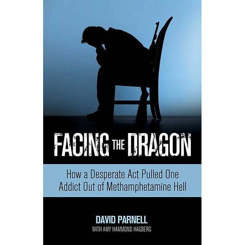 Facing the Dragon - by  David Parnell & Amy Hagberg (Paperback) - image 1 of 1