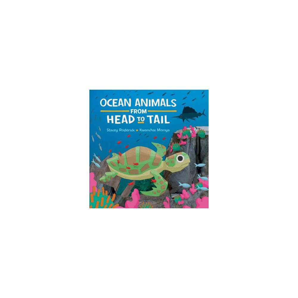 Ocean Animals from Head to Tail (Hardcover) (Stacey Roderick)