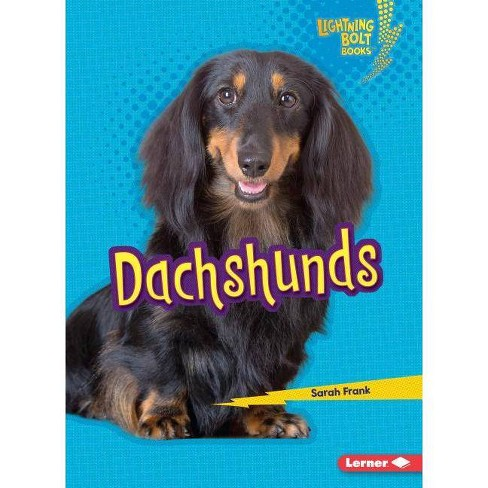 Dachshunds - (Lightning Bolt Books (R) -- Who's a Good Dog?) by  Sarah Frank (Paperback) - image 1 of 1