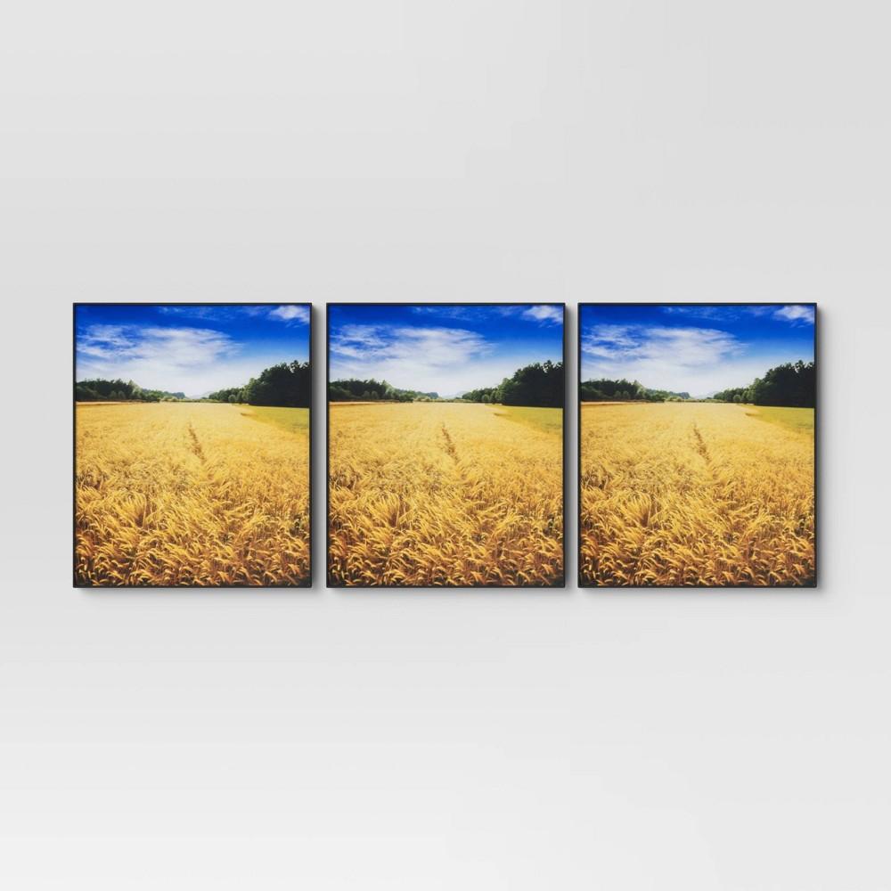 """Image of """"8"""""""" x 10"""""""" Set of 3 Format Frames Black - Room Essentials"""""""