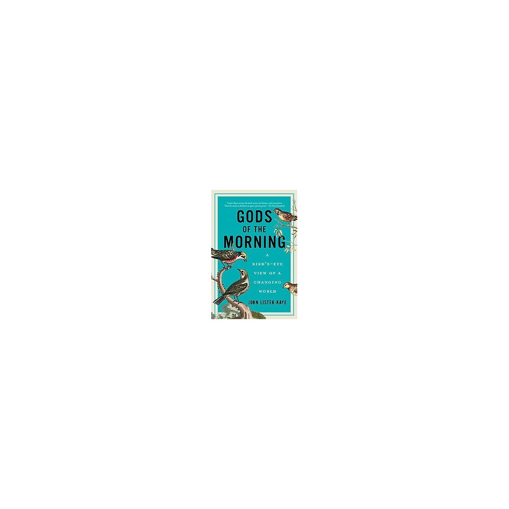 Gods of the Morning : A Bird's-Eye View of a Changing World - Reprint by John Lister-Kaye (Paperback)