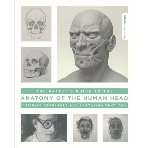 Artist\'s Guide to the Anatomy of the Human Head : Defining Structure ...