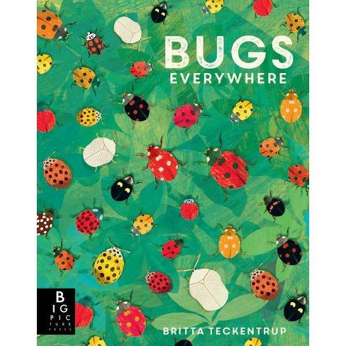 Bugs Everywhere - by  Lily Murray (Hardcover) - image 1 of 1