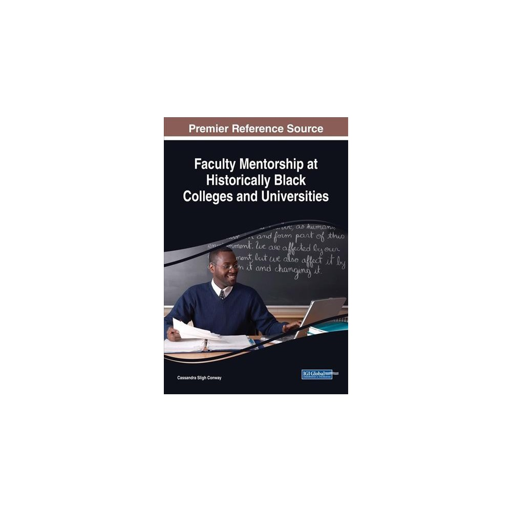 Faculty Mentorship at Historically Black Colleges and Universities - (Hardcover)