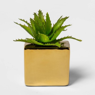 "3"" x 2.5"" Artificial Succulent in Magnetic Gold Pot - Project 62™"