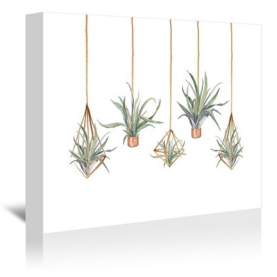 Americanflat Airplant by Cami Monet Wrapped Canvas