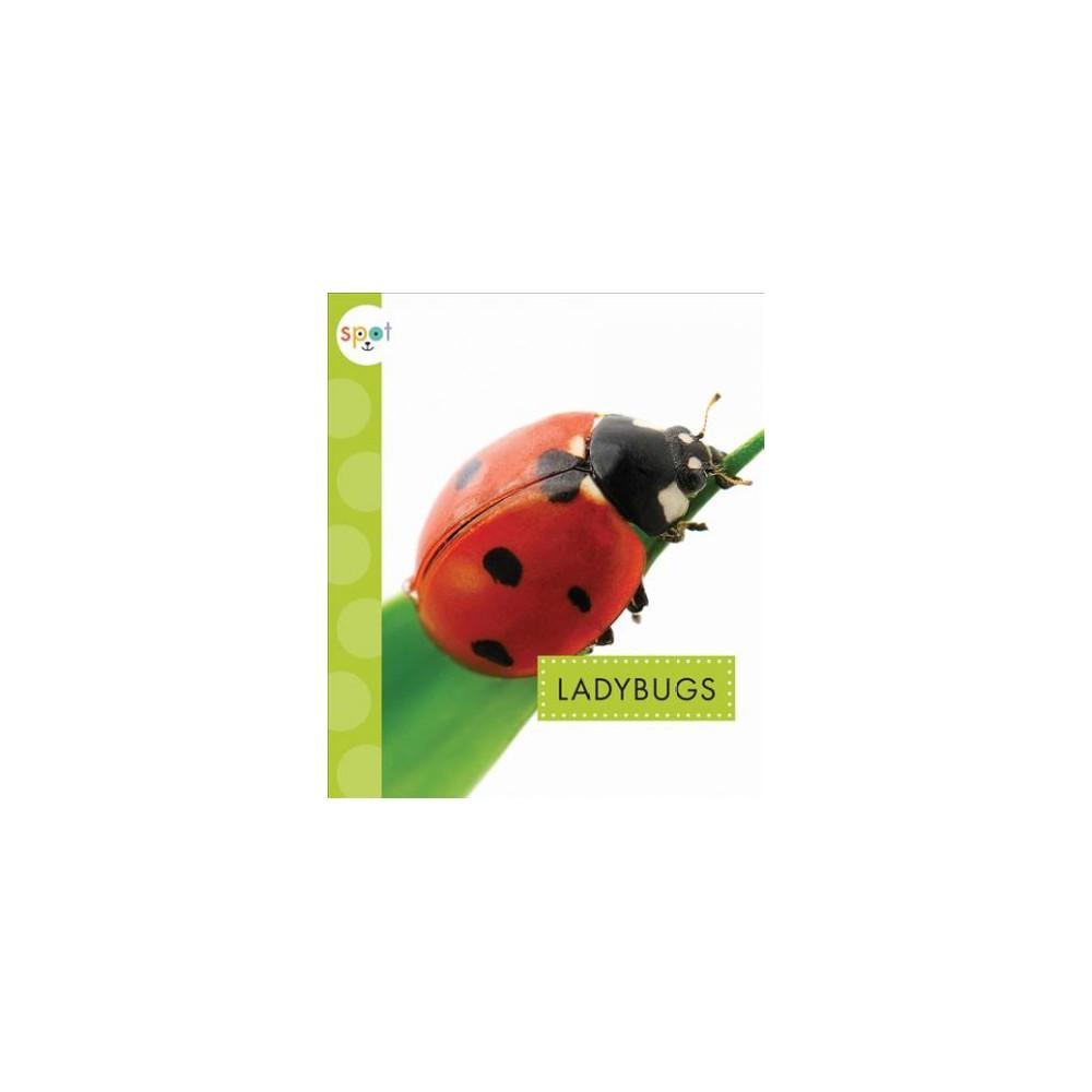Ladybugs (Reprint) (Paperback) (Nessa Black)