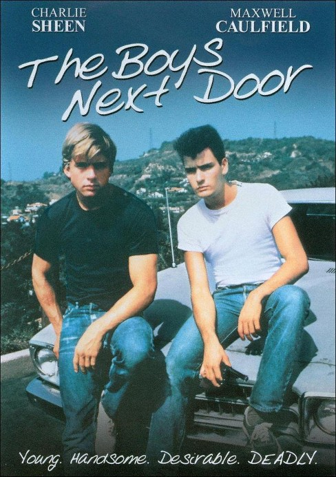 Boys next door (DVD) - image 1 of 1
