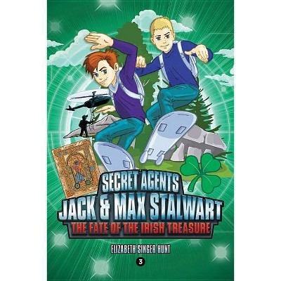 Secret Agents Jack and Max Stalwart: Book 3: The Fate of the Irish Treasure: Ireland - by  Elizabeth Singer Hunt (Paperback)