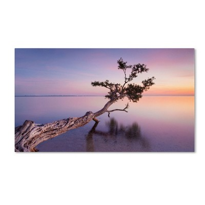 'Water Tree XV' by Moises Levy Ready to Hang Canvas Wall Art