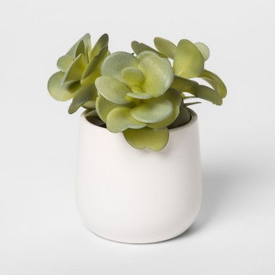 6  x 5  Artificial Sedum In Pot Green/White - Threshold™