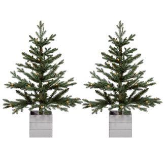 2pk 3ft Pre-lit Artificial Christmas Tree Potted Balsam Fir Clear Lights - Wondershop™