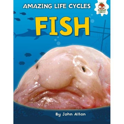 Fish - (Amazing Life Cycles) by  John Allan (Hardcover) - image 1 of 1
