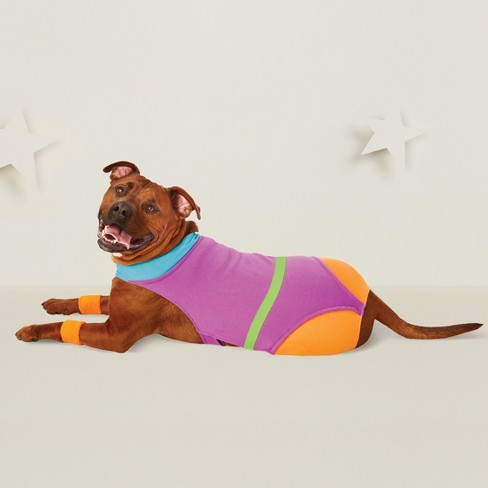 Aerobics Dog Costume - Hyde and Eek! Boutique™ - image 1 of 2