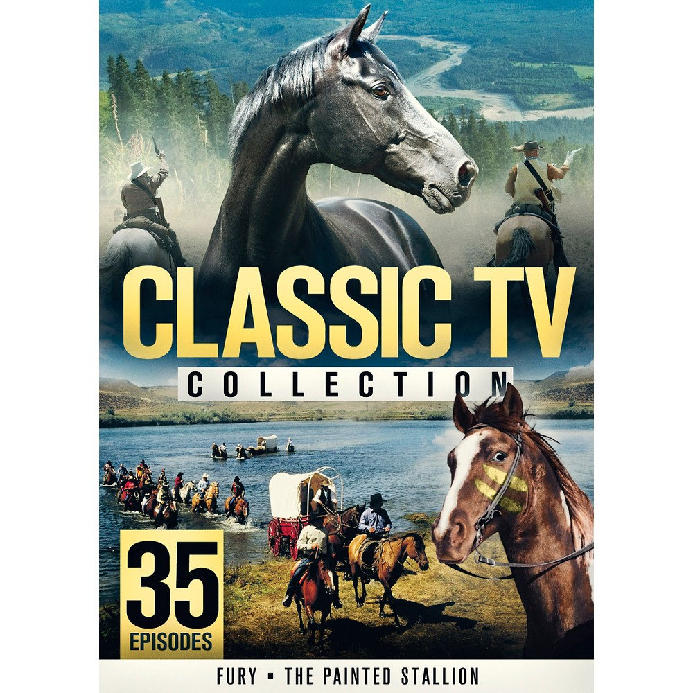 Classic Tv Collection:Fury & The Pain (Dvd)