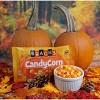 Brach's Halloween Candy Corn - 20oz - image 3 of 4
