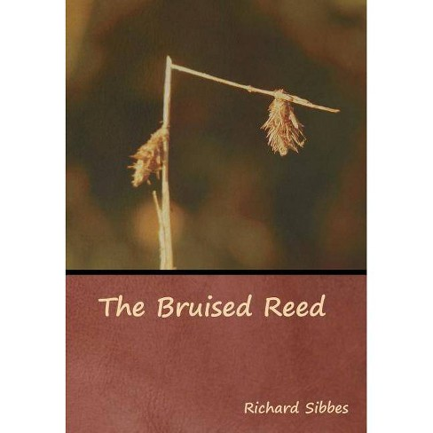The Bruised Reed - by  Richard Sibbes (Hardcover) - image 1 of 1