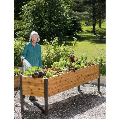 "Gardener's Supply 2 Ft x 8 Ft Raised Garden Bed Elevated Cedar Planter Box Standing Garden (24"" x 96"") - Gardener's Supply Company - image 1 of 4"