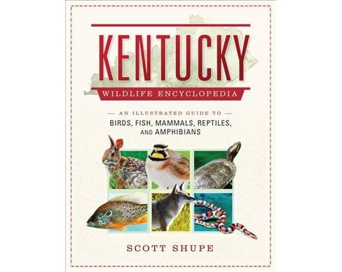 Kentucky Wildlife Encyclopedia : An Illustrated Guide to Birds, Fish, Mammals, Reptiles, and Amphibians - image 1 of 1